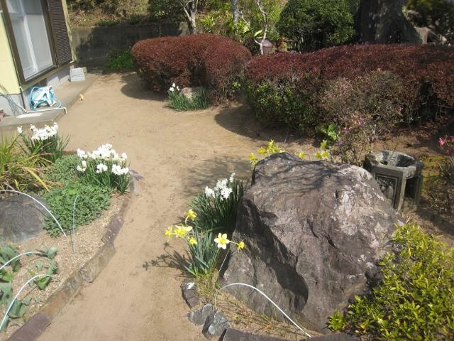 春の花3 005 (640x480)