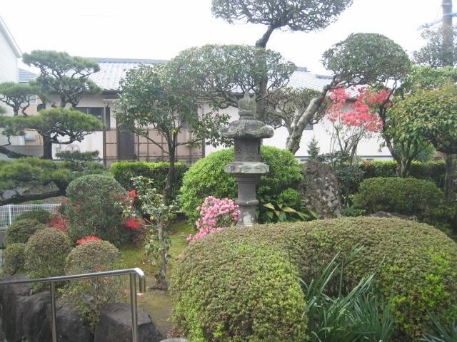 庭の花4 018 (640x480)