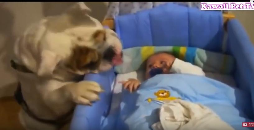 キャプチャ(初めての赤ちゃん)